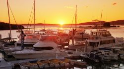 Magnificent marina sunsets